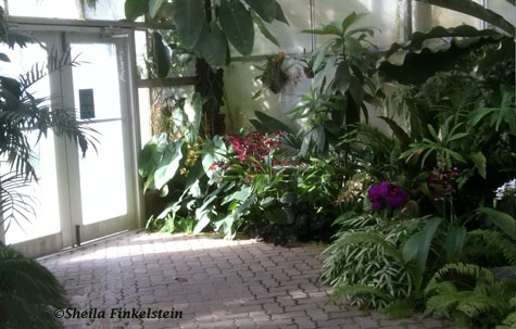 American Orchid Society greenhouse exit to the gardens