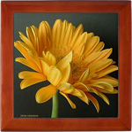 gerber daisy in a tile keepsake box