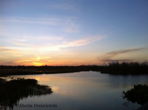 sunset and water refections at Green Cay Wetlands
