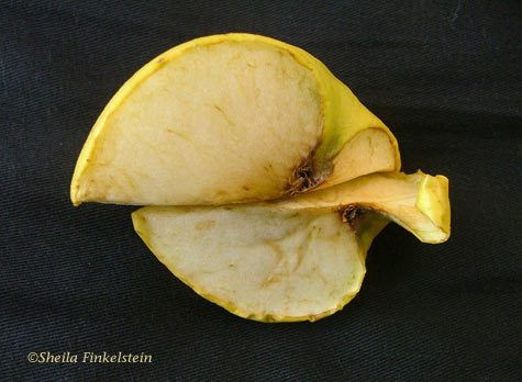 sliced golden delicious apple