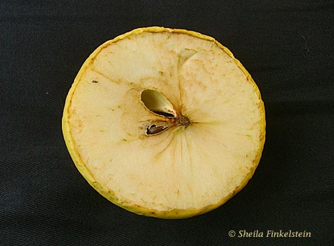 another view of cut golden delicious apple