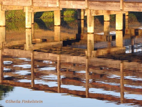 Wakodahatchee boardwalk reflections 2