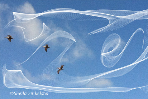 Flowpaper image on blue sky with birds background