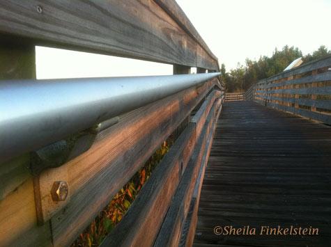 Green Cay boardwalk and railing near sunrise