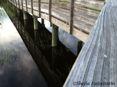 boardwalk at Green Cay Wetlands - reflections, texture and angles
