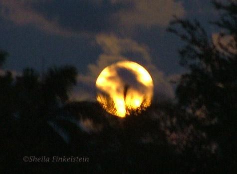Full golden moon at Green Cay