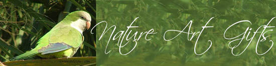 Nature Art Gift Header