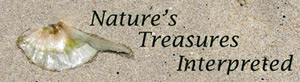 Nature's Treasures Interpreted  - header