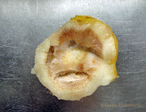 Second view of face in a rotten pear