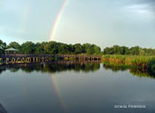 double rainbow in Wakodahatchee Wetlands