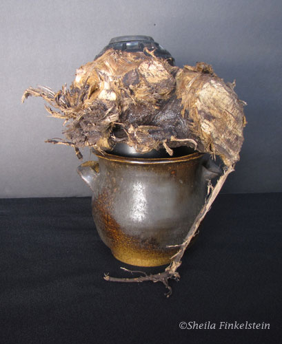 live oak root wrapped around a sprinker head in a vase
