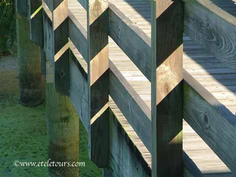 shadows on a railing at Zigzag Lines Photography