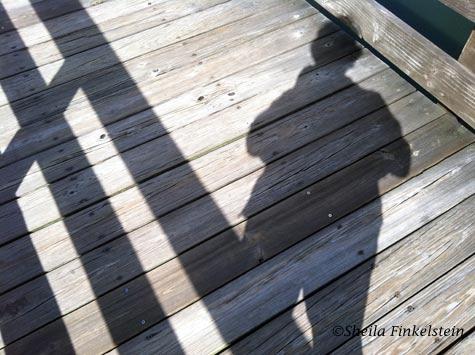 Sheila's shadow on the concrete walk in Wakodahatchee Wetlands