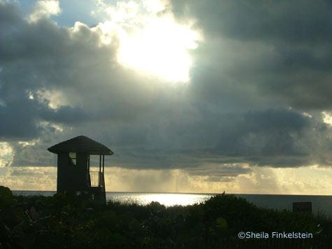 sunrise through dunes at Delray Beach