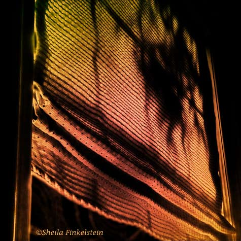 window shade photo enhanced with FX Photo Studio  iPhone app
