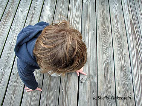 boy studying woodknot on the boardwalk at Green Cay Wetlands